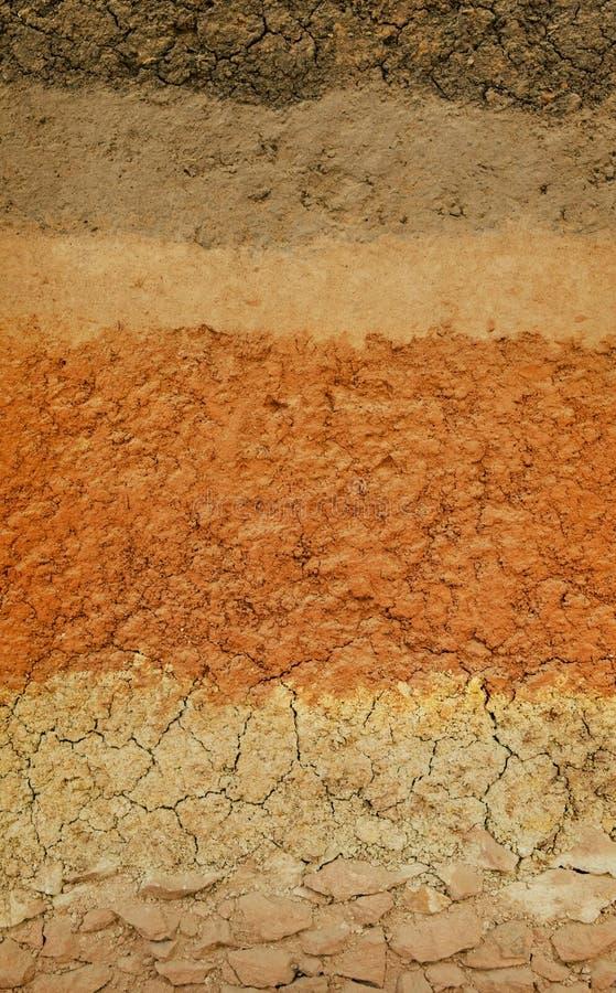 Surface de coupe de la terre, niveau de sol dans le domaine Thaïlande d'agricultur image stock