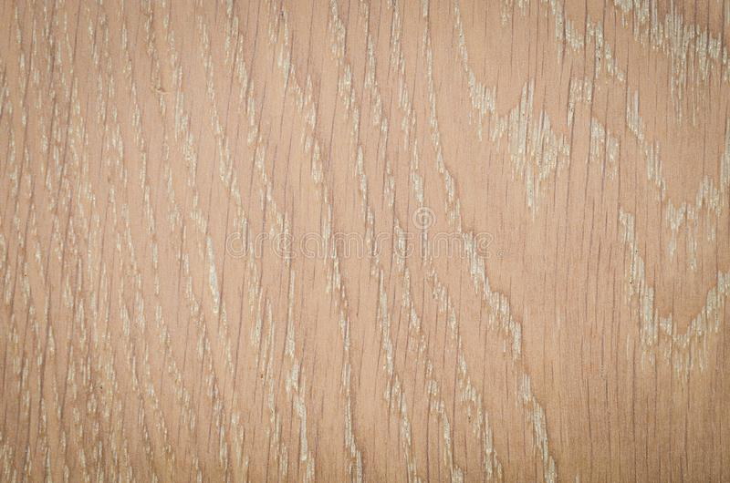 Surface en bois de fond de texture photo libre de droits