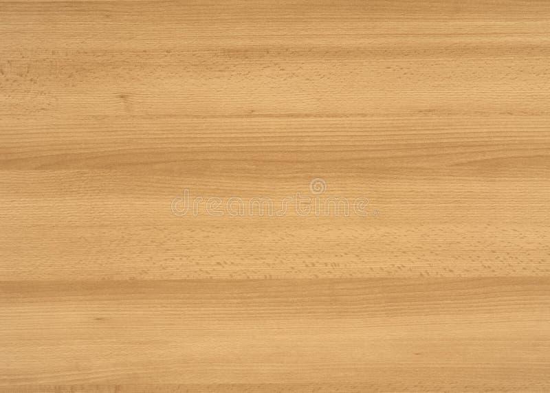 Surface en bois de grain photographie stock libre de droits