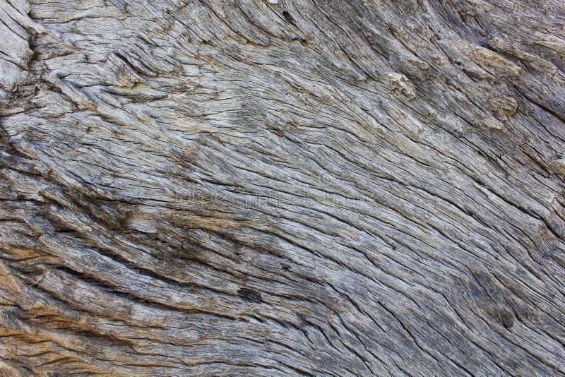 Surface en bois naturelle, milieux abstraits et textures images stock