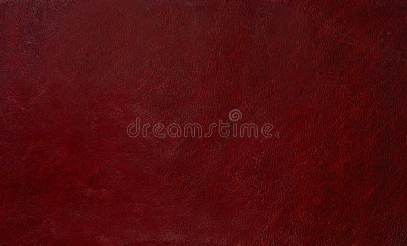 Surface en cuir photographie stock libre de droits