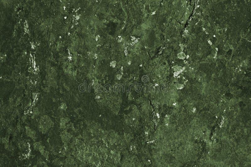 Surface en pierre vert-foncé abstraite ressemblant à la mousse, au lichen, à une carte topographique ou au paysage images libres de droits