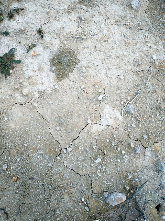 Surface of a grungy dry cracking parched earth. For textural background royalty free stock images