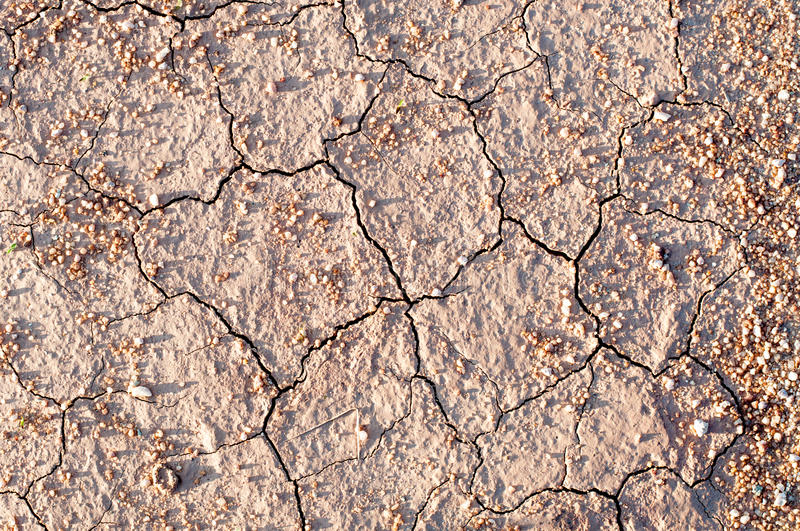 Surface of a grungy dry cracking parched earth for textural back. The Surface of a grungy dry cracking parched earth for textural background stock image