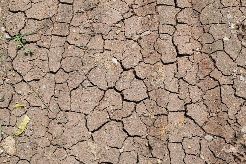 Surface of a grungy dry cracking parched earth. For texture background stock images
