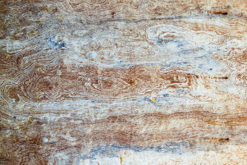 Old Grunge textured Ply wooden background. The surface of the old ply wood texture, Old grunge black and white textured wooden background royalty free stock photos
