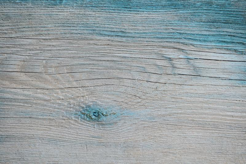 The surface of the old wooden board blue tint. With cracks and knots stock photo