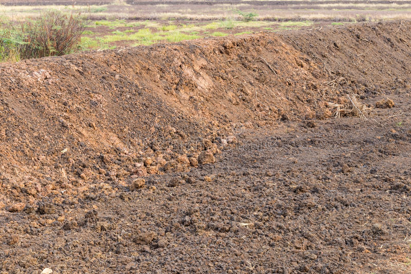 Surface of pile of loamy soil. View of the trail with gravelly loam that was dug up to prepare rice farming areas stock images