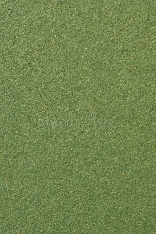 The surface of a sheet of green cardboard. Calm relaxing backdrop or wallpaper. Rough natural paper texture with cellulose fibers. View from above stock photo