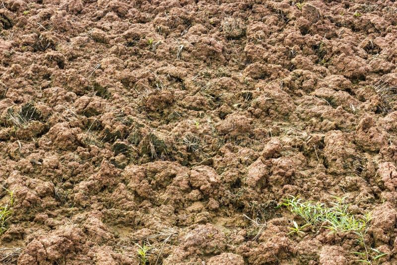 Surface soil tillage. stock photography