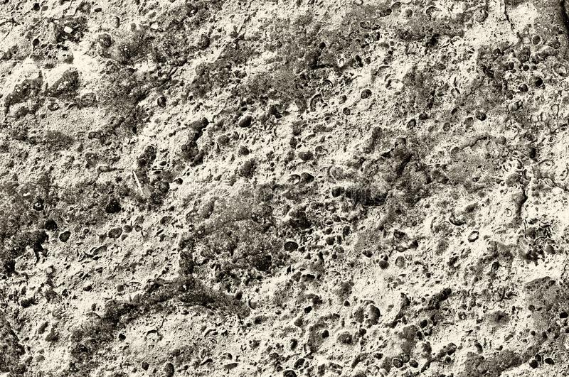 Surface of stone, structure. The surface of the coastal stone in the sepia representation with a pronounced structure royalty free stock photos