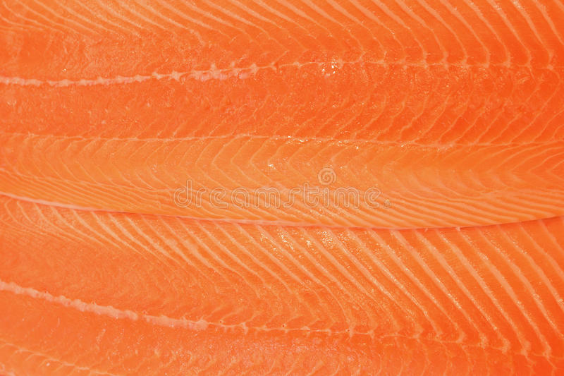 Surface Texture of Salmon Fillet royalty free stock photo