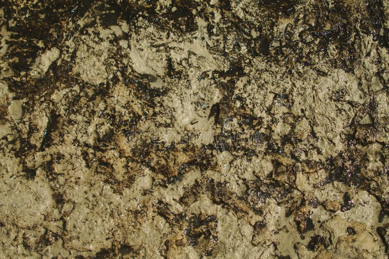 Wet rough rock surface royalty free stock image
