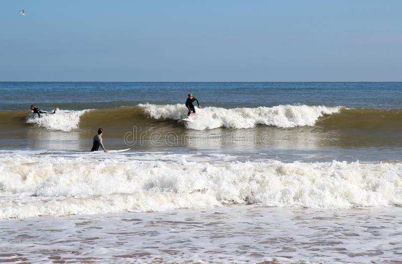 Surfando as ondas. imagem de stock
