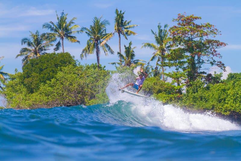 Surfando uma onda. Ilha de Bali. Indonésia. imagem de stock royalty free