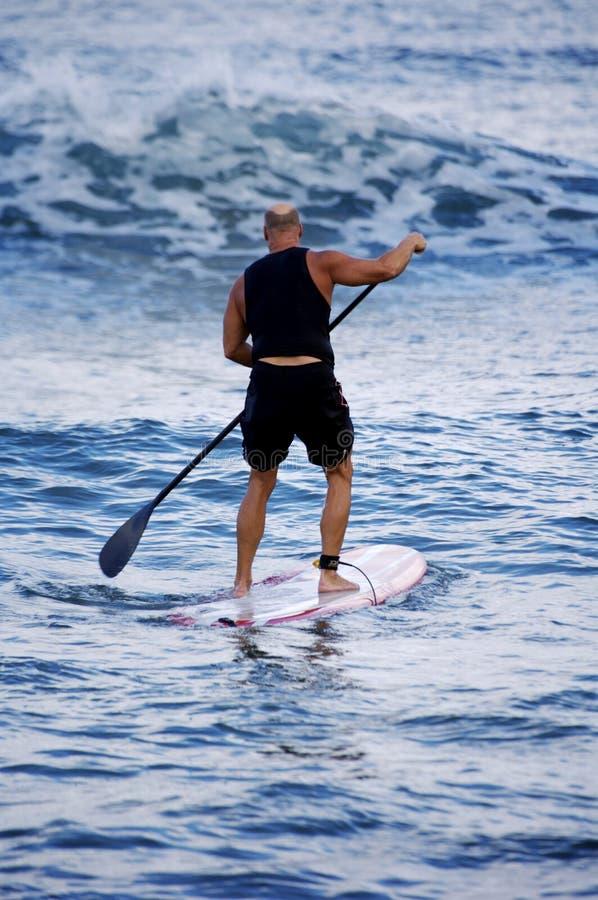 Surfar com remo foto de stock