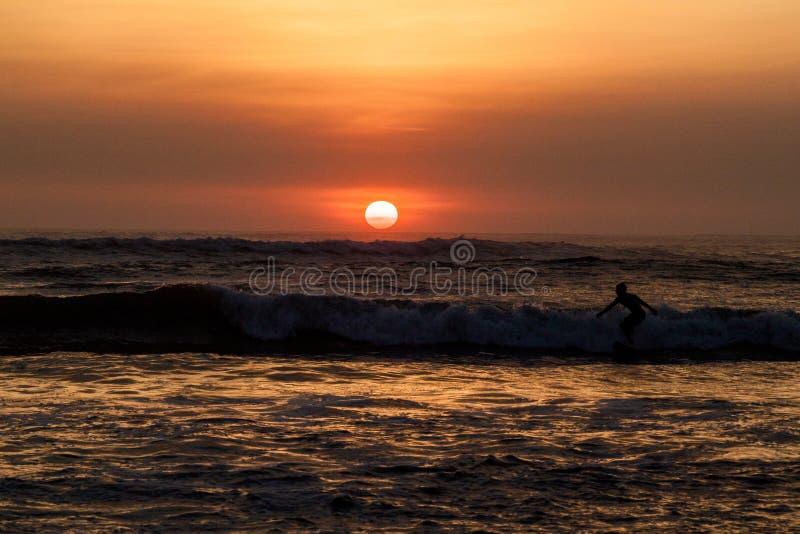 Surfar durante o por do sol foto de stock royalty free