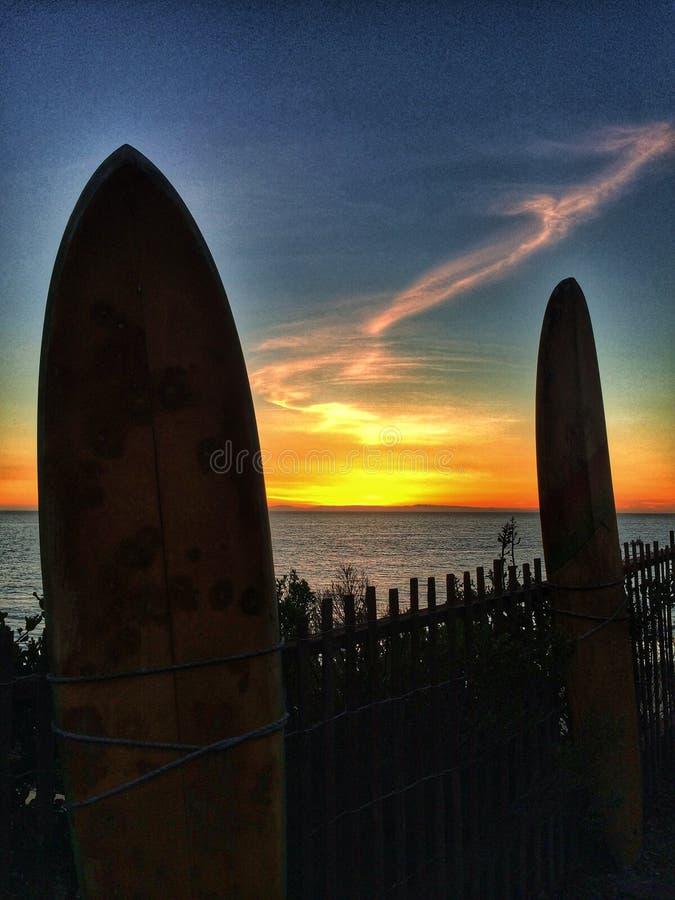 surfar upp arkivbilder