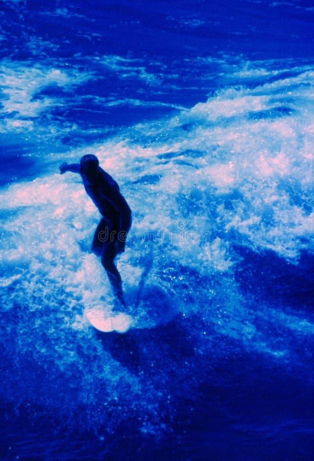 surfare arkivfoto