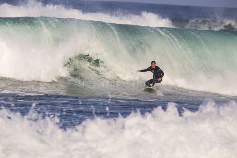 surfare royaltyfri bild