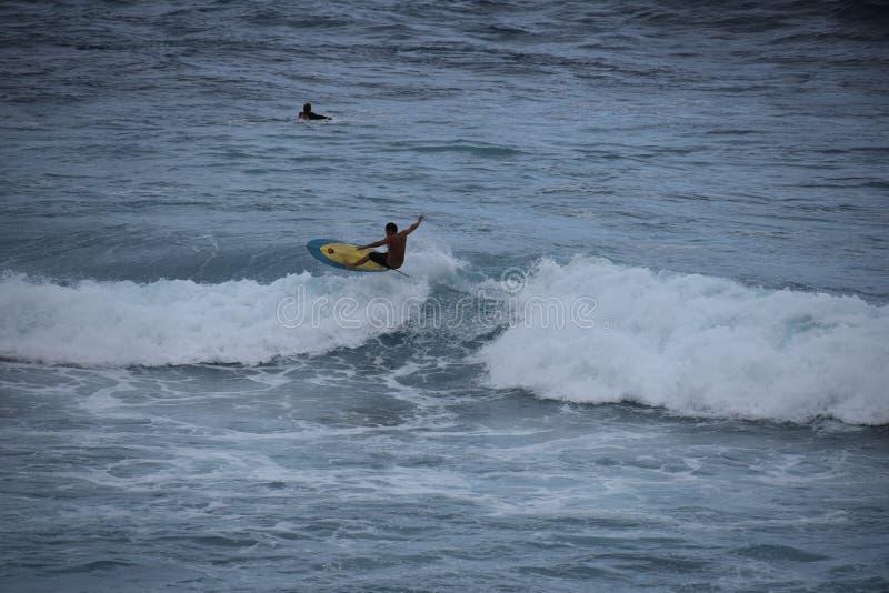 Surfare på de enorma Oahu vågorna royaltyfri bild