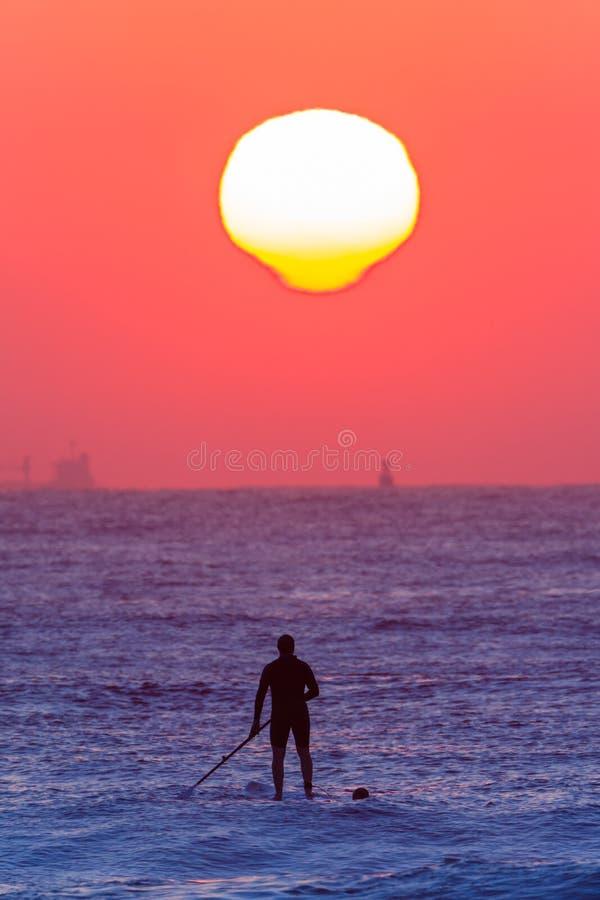 Surfare som paddlar soluppgång för brädehavhorisont royaltyfri foto