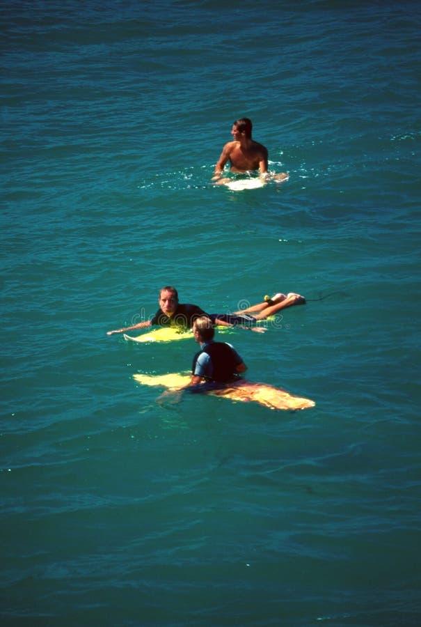 surfarear royaltyfri foto