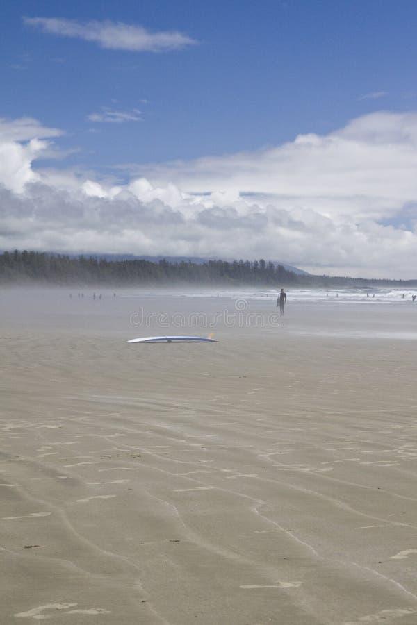 Surfaren går till och med den salta sprejen på förbränningsugnen vaggar Stillahavs- Rim National Park royaltyfria foton