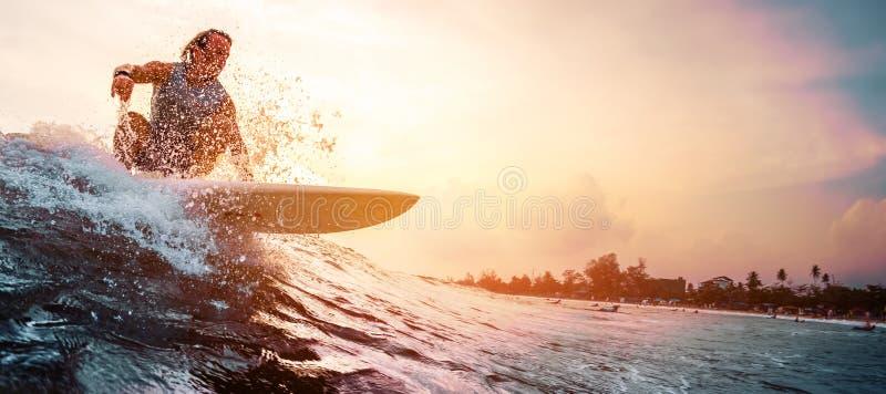Surfaren rider havvågen royaltyfria bilder