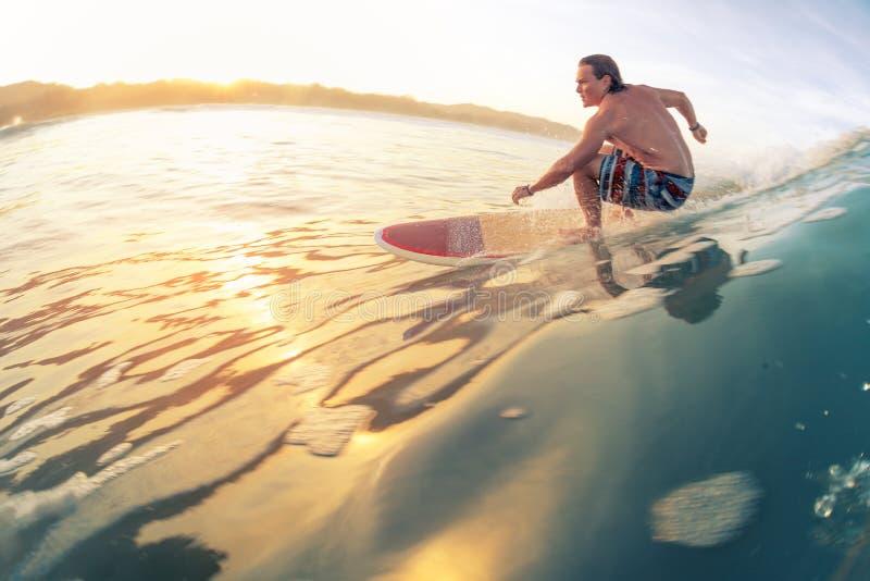 Surfaren rider vågen royaltyfria bilder