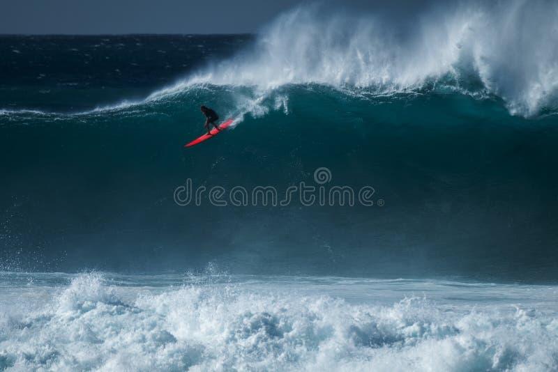 Surfaren rider vågen royaltyfri bild