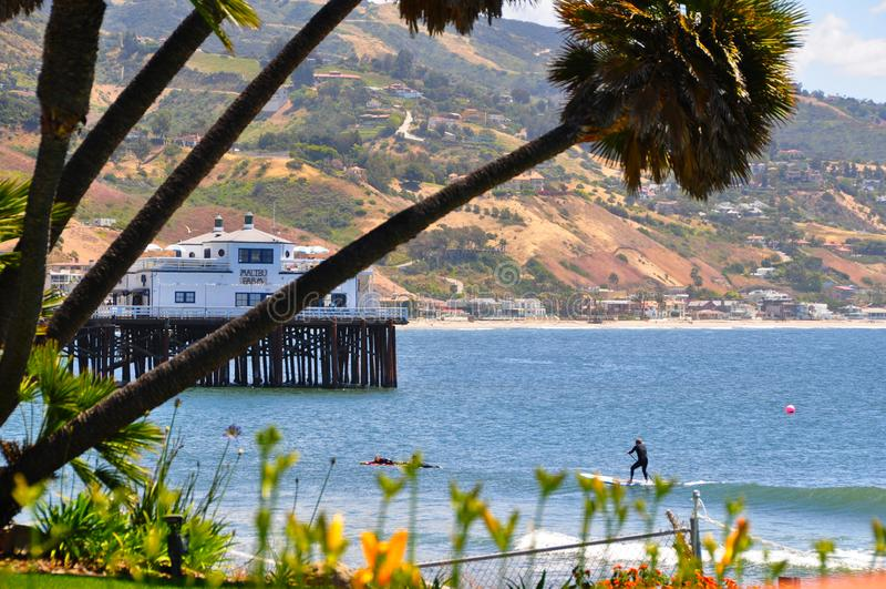 Surfareritter en våg, Malibu Kalifornien royaltyfri foto