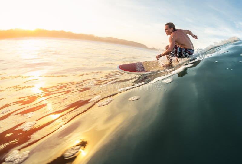 Surfarerittvåg arkivbilder