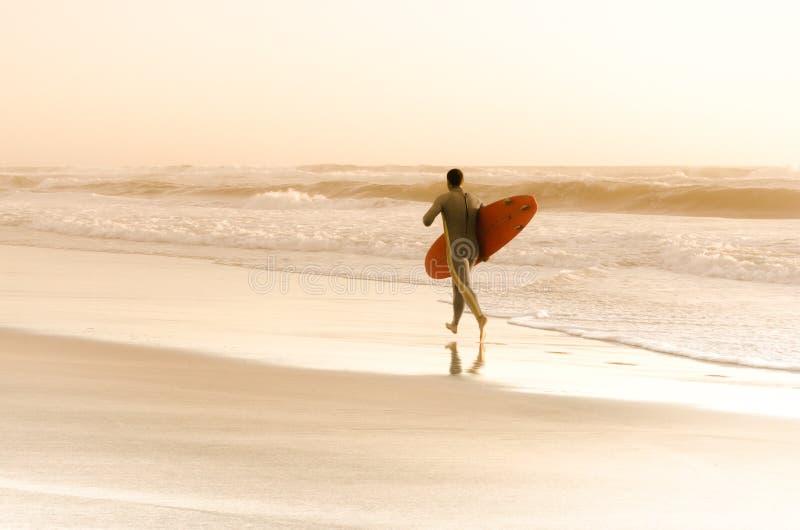 Surfarespring royaltyfria bilder
