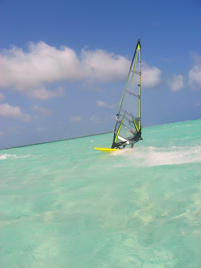 surfarewind fotografering för bildbyråer