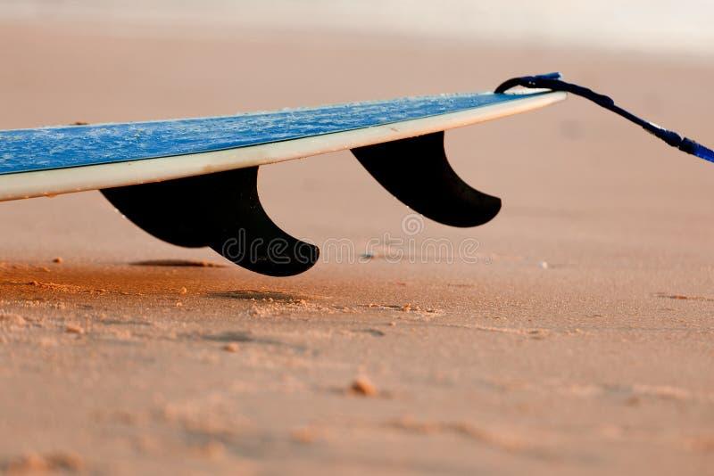 Surfboard стоковая фотография