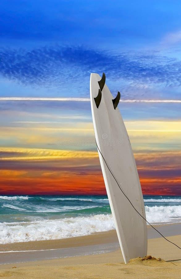 Free Surfboard Stock Photos - 26521443