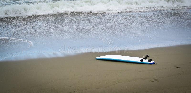 surfboard photo libre de droits