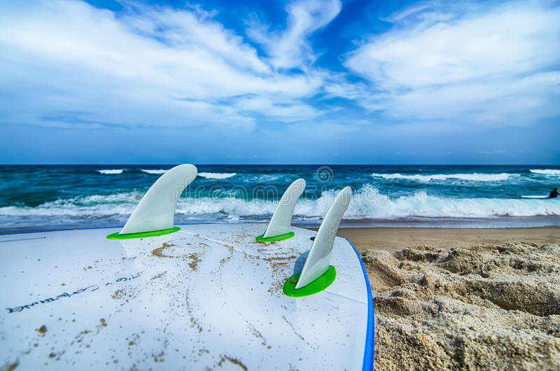Surfboard and fins awaiting to get into ocean water royalty free stock photo