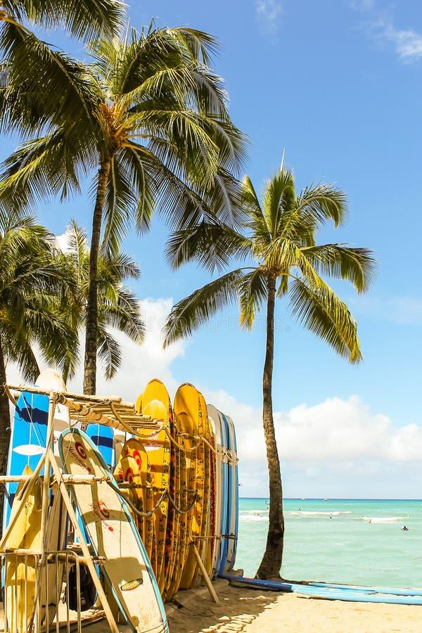 Surfboard stojak na Pacyficznego oceanu brzeg obraz stock