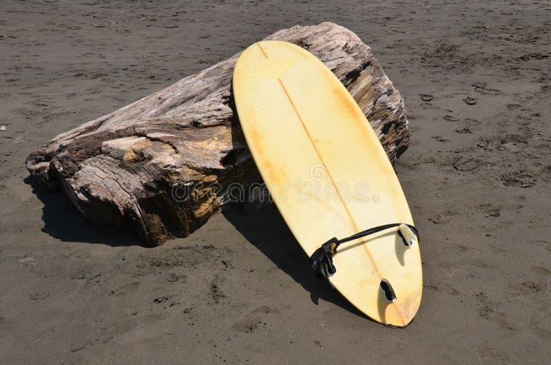 Surfboard On A Treestump On Volcanic Sand Beach Stock Image