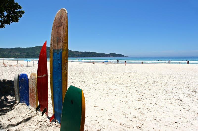 Surfboards на белом пляже песка стоковые фотографии rf
