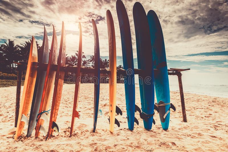 surfboards images stock