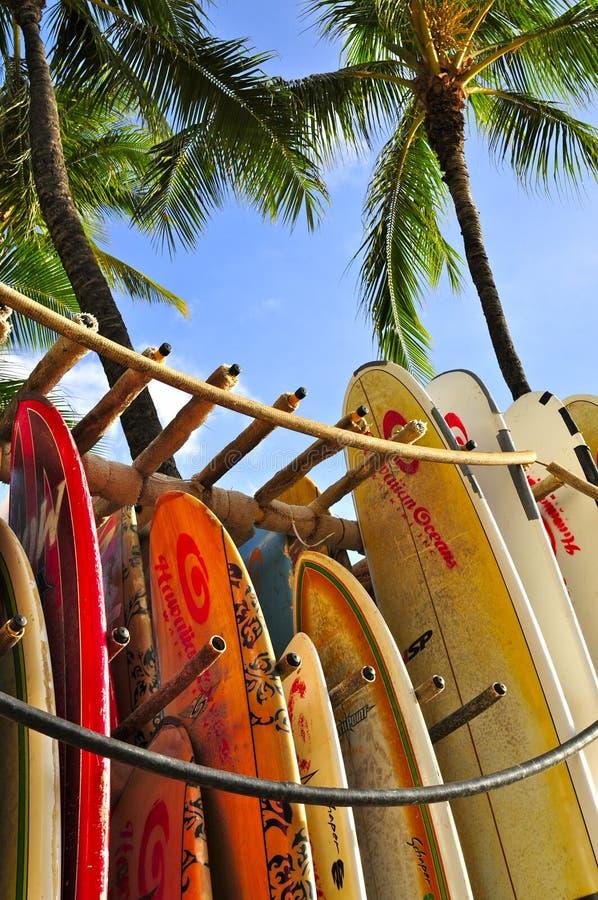 surfboards стоковые фото