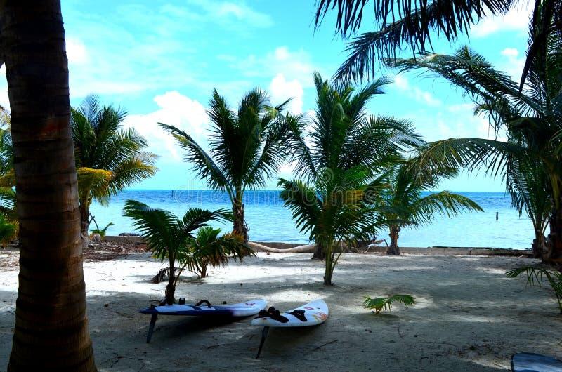 Surfboards na plaży w Belize fotografia stock