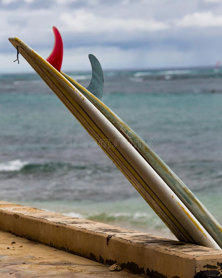 Surfboards at rest royalty free stock image