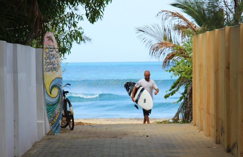 SurfBoy imagenes de archivo