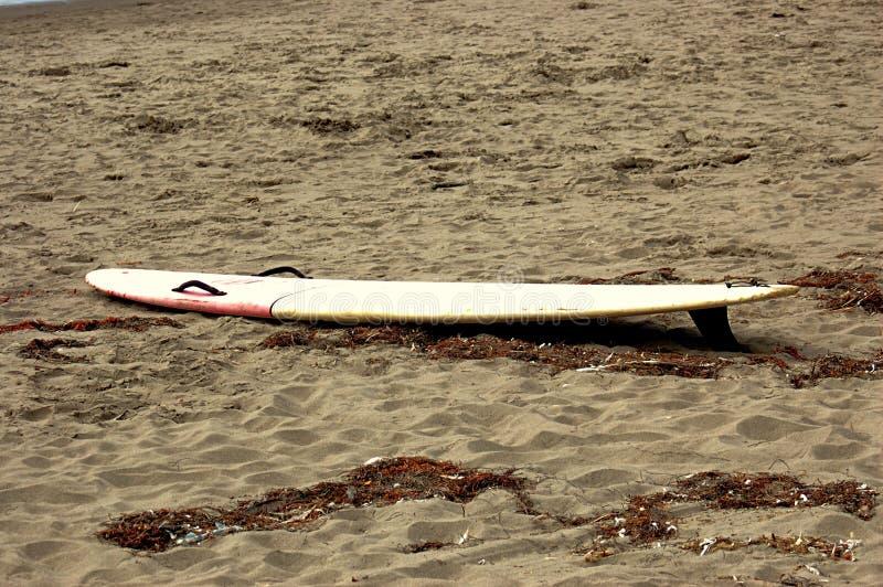 surfbrett stockfotos