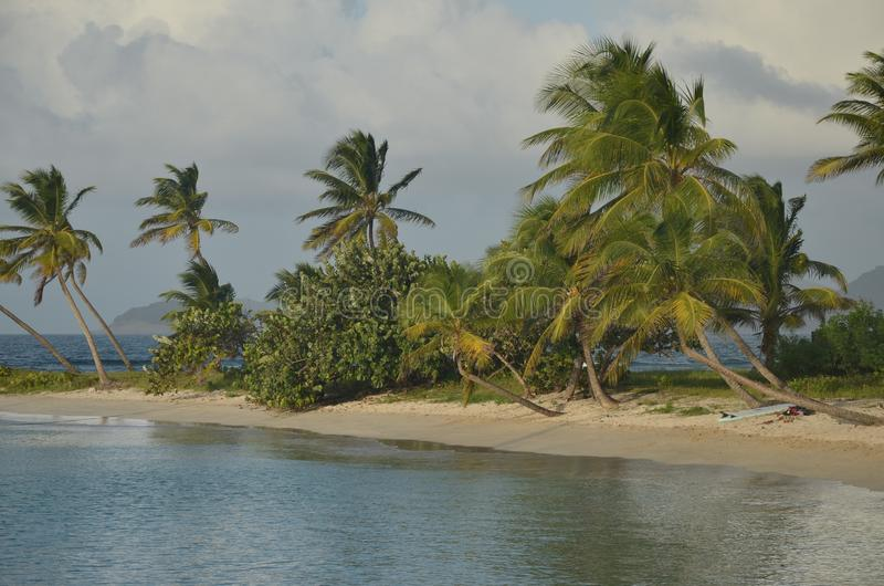 Surfbrett auf dem karibischen Strandstreifen lizenzfreie stockbilder