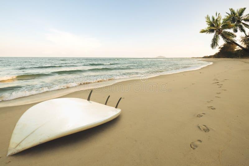 Surfbrett auf tropischem Strand bei Sonnenaufgang im Sommer lizenzfreie stockbilder